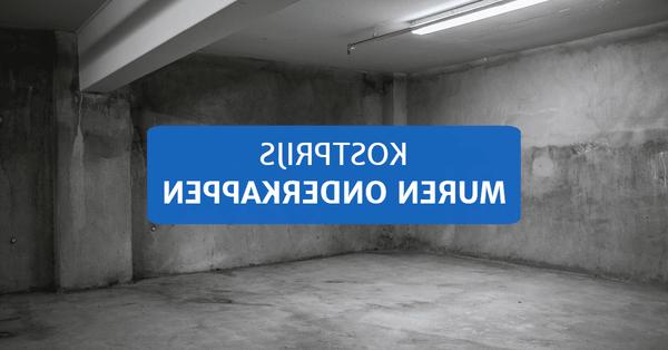 ᐈ Renovatie info ᐈ Premie vochtbestrijding 2016 / kelderdichting kalmthout ᐈ Verbouwkosten